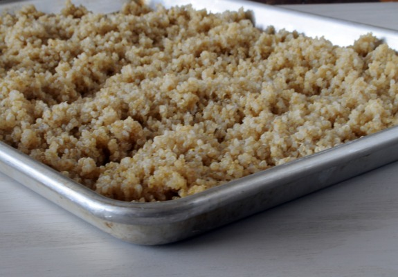 cooling-quinoa-for-salad-recipe-mountain-mama-cooks-3